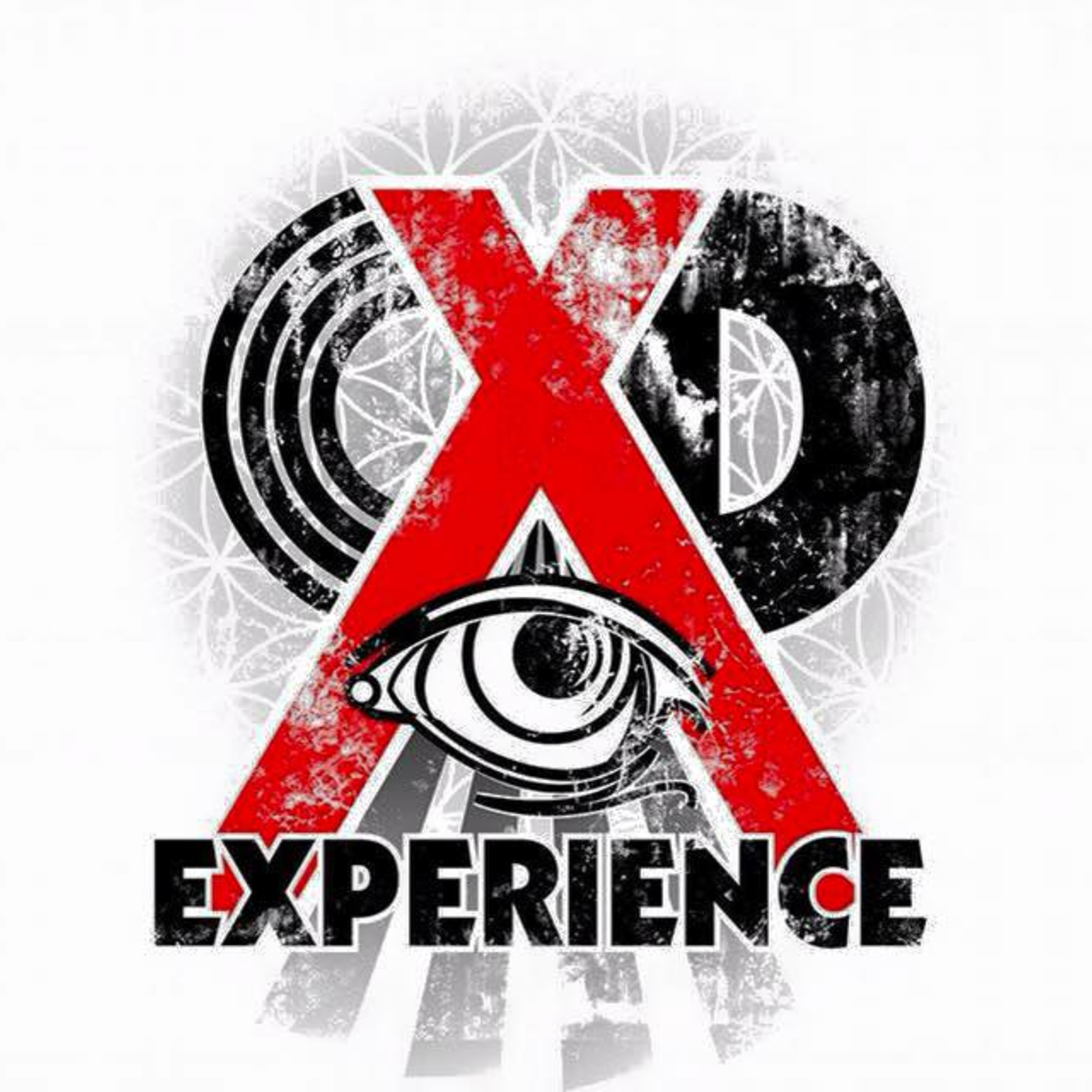 The XD Experience